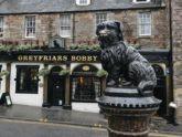 Edinbrugh Dog
