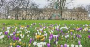 What's on in Edinburgh - April