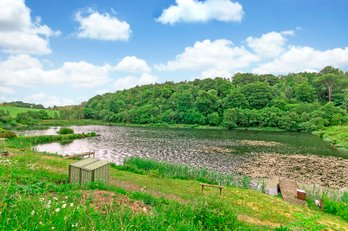P201: Bowden Springs Fishery, Linlithgow, West Lothian