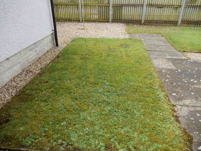 P49: Manderston Meadow, Newton Mearns, East Renfrewshire